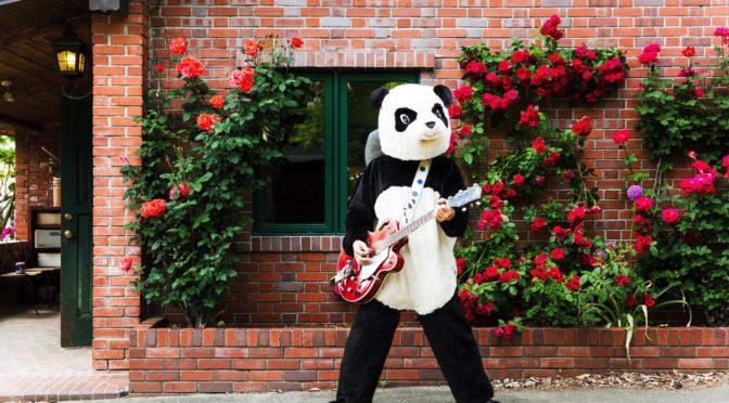 水玉ロックスターのカルピスプレスリー!「ギターパンダ」